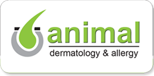 Animal Dermatology and Allergy